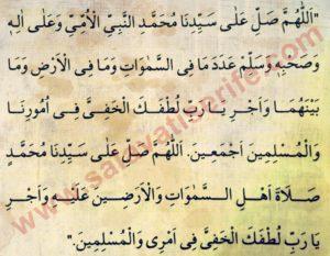 Lutfu Hafi Salavatı